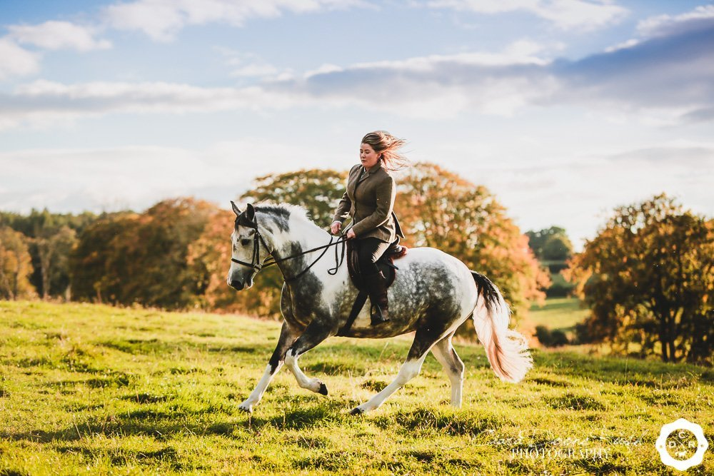 a rider cantering her horse on a photo shoot