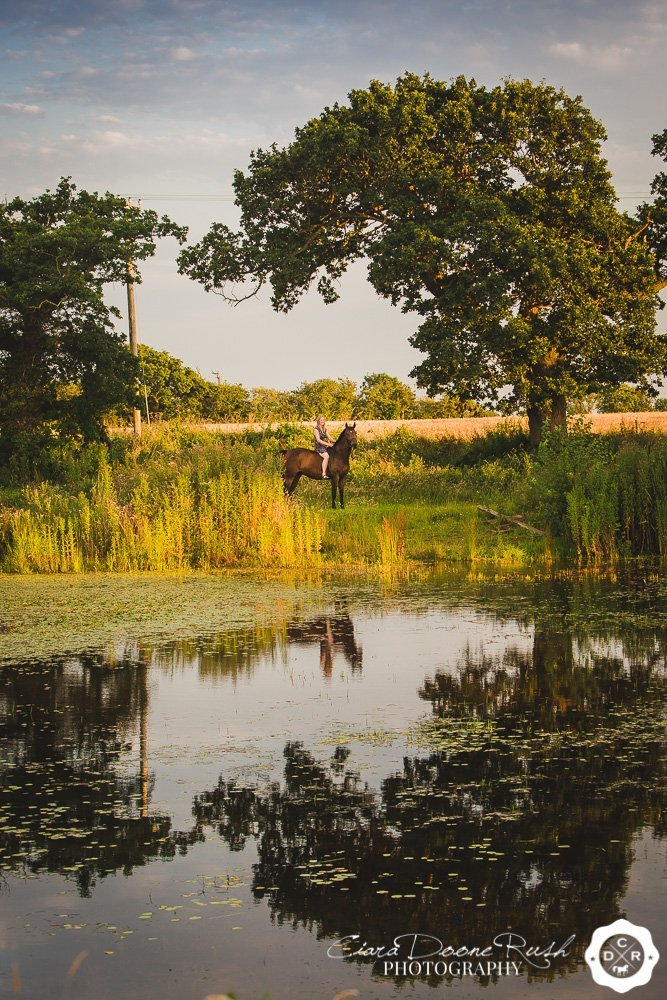 a reflection of a horse and rider in a pond