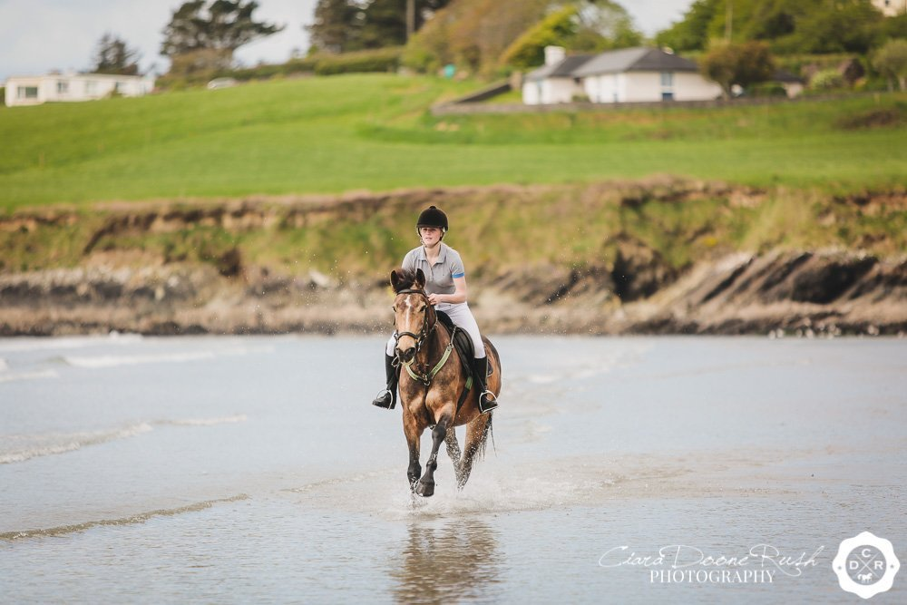 cantering through the sea harbour view beach cork