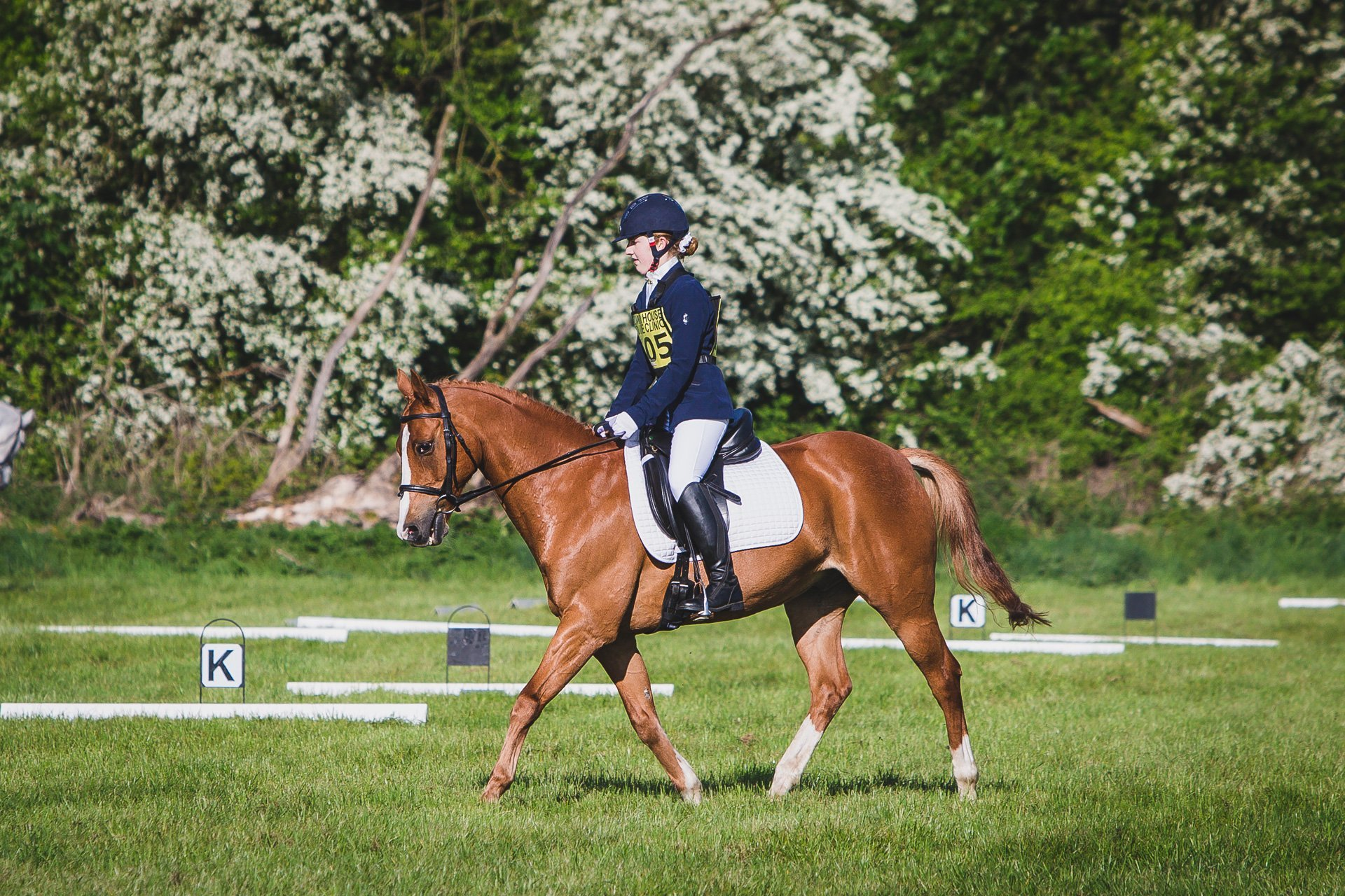 Llanymynech horse trials BE 100 u18 dressage 2017