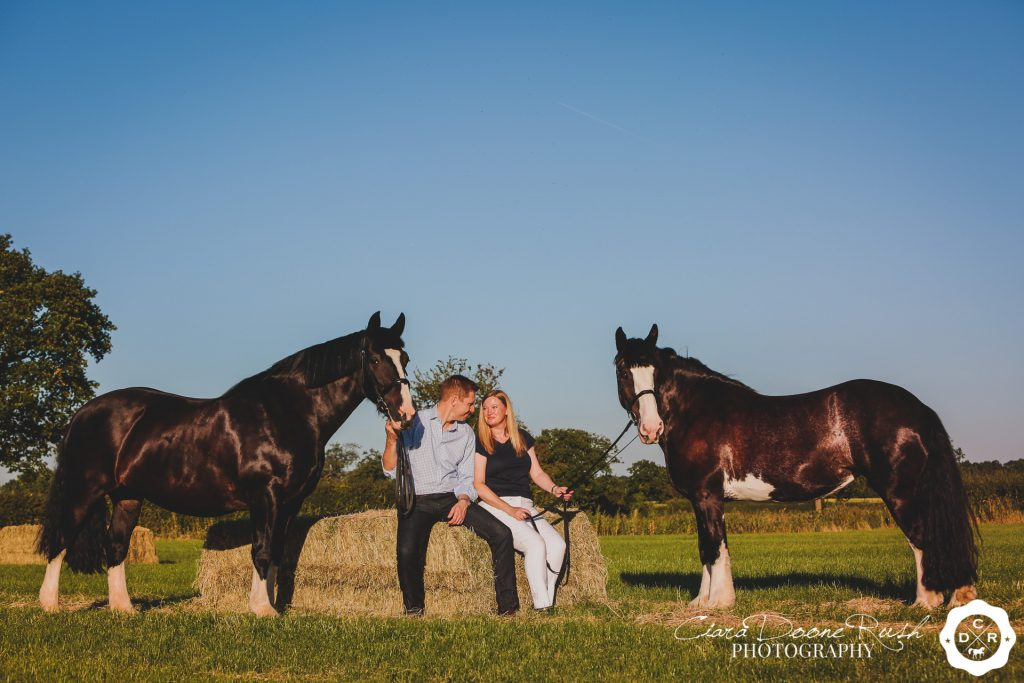 a couple and their horses photo shoot