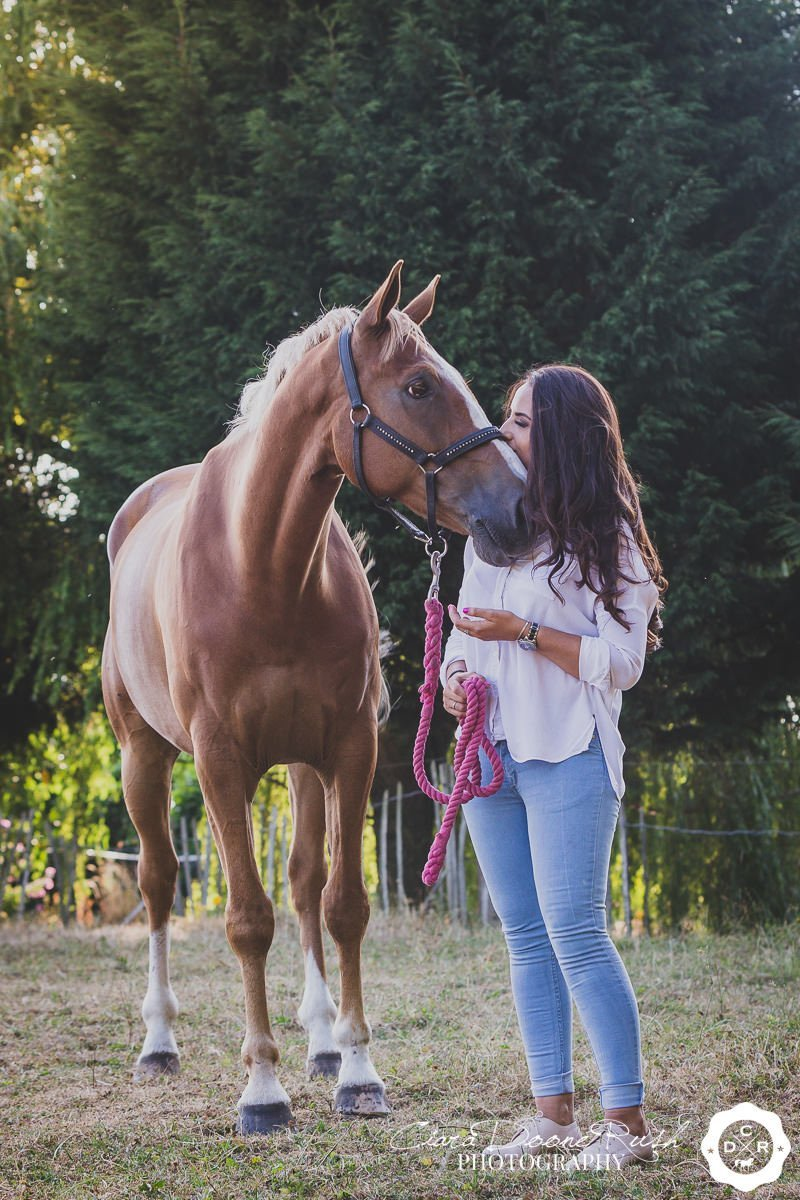 a chestnut horse and his owner