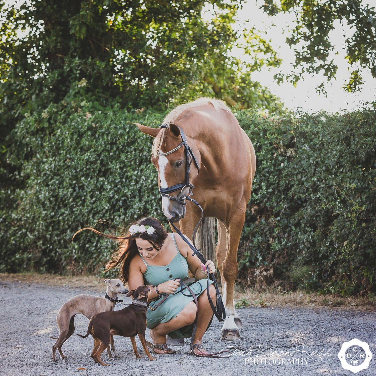 a woman with her horse and dogs on a photo shoot