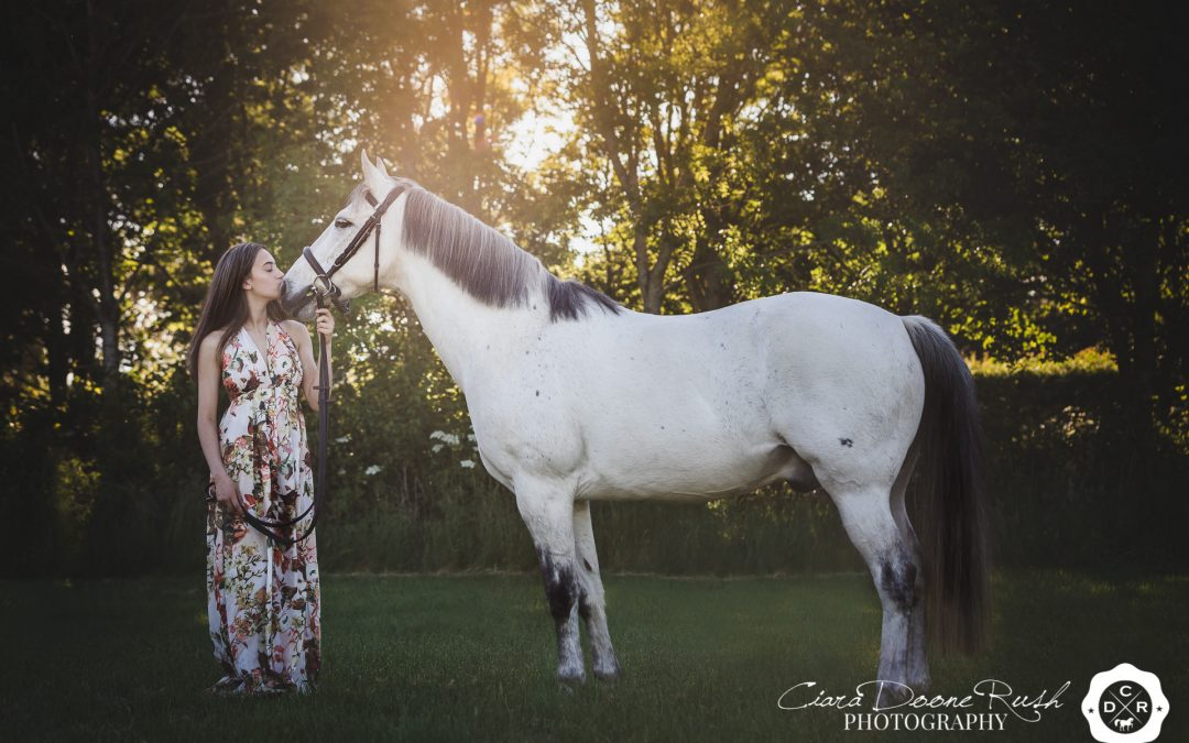 Why you should book a Horse Photo Shoot